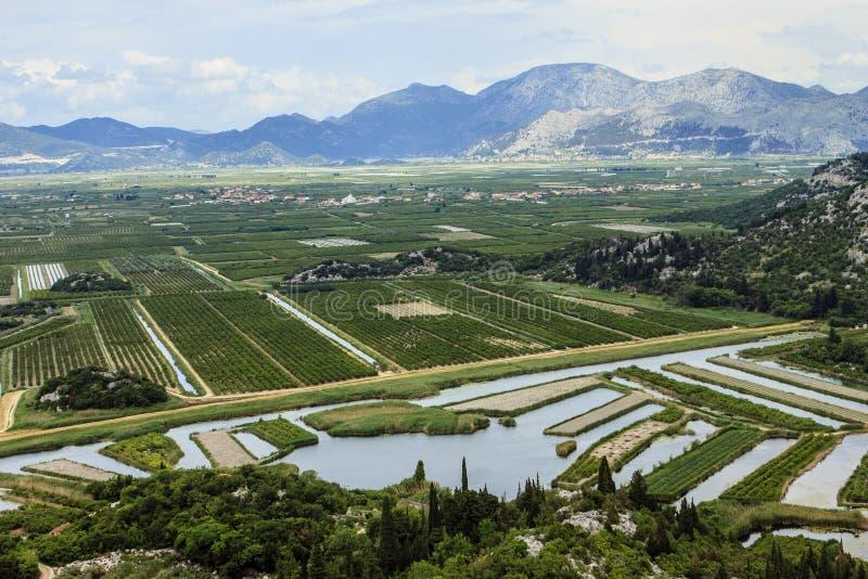 Delta del río de Neretva en Croatia imagen de archivo libre de regalías