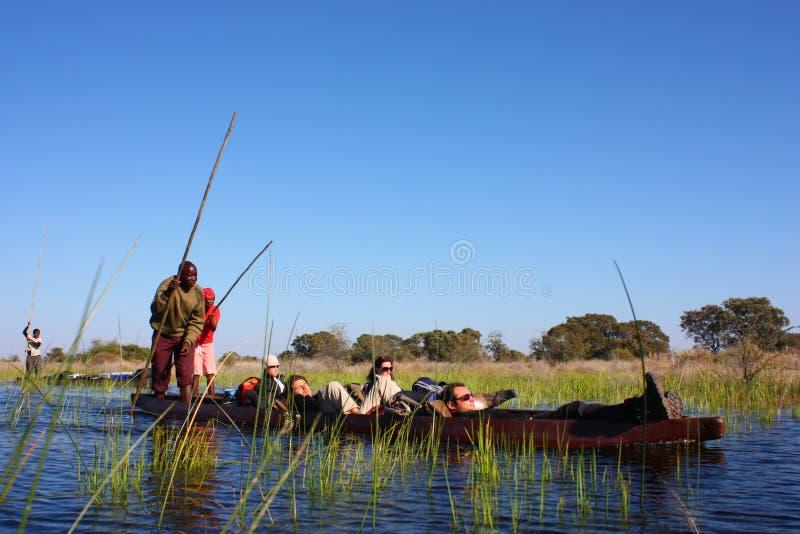 Delta di Okavango immagine stock libera da diritti