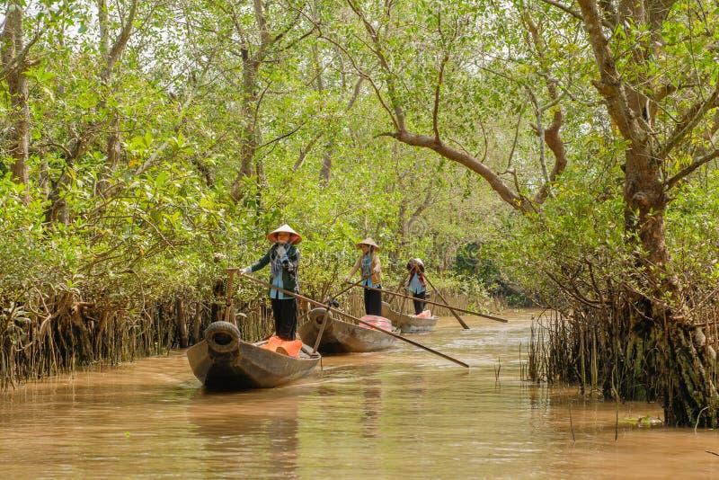 Delta du Vietnam - du Mékong photographie stock libre de droits