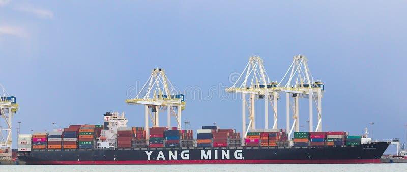 DELTA KANADA, Mar, - 14, 2019: wielki ładunku statek dostaje ładujący z ładunkiem przy delta portem zdjęcie stock