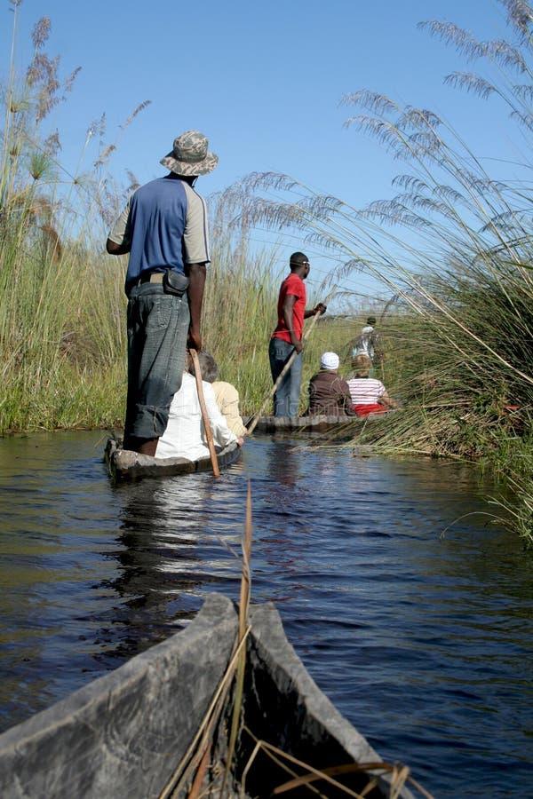 Delta mokoro徒步旅行队 免版税库存图片