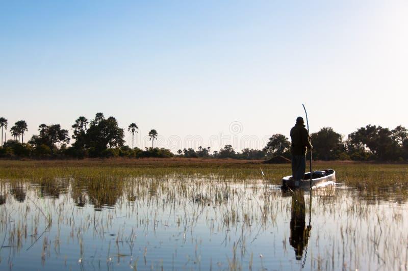 Delta Mokoro di Okavango fotografia stock