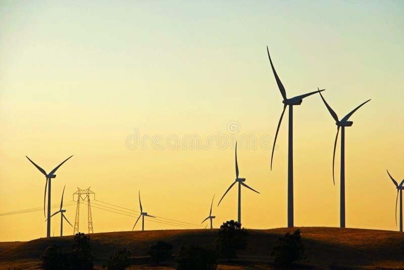 Delta Wind Farm royalty free stock image
