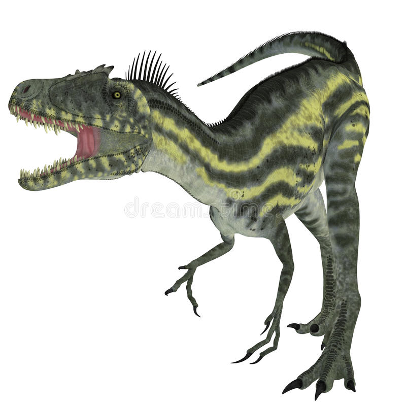 Deltadromeus on White. Deltadromeus was a theropod carnivorous dinosaur that lived in Northern Africa during the Cretaceous Period royalty free illustration