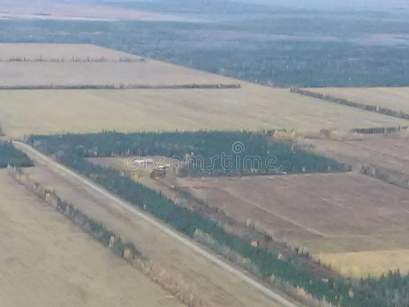Deltakreuzungsbauernhöfe stockbild