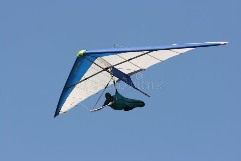 Deltavliegen royalty-vrije stock fotografie