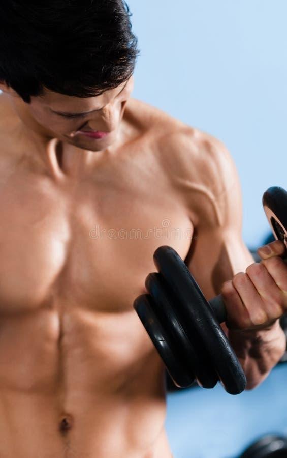 Demi d'homme nu beau utilise l'haltère image stock