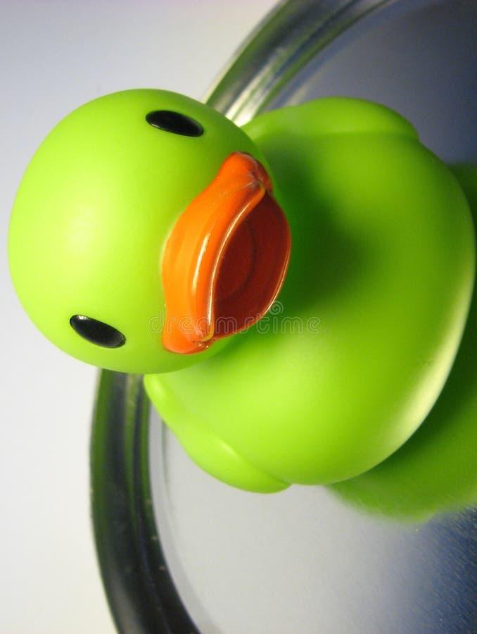 Demi de canard deux images stock