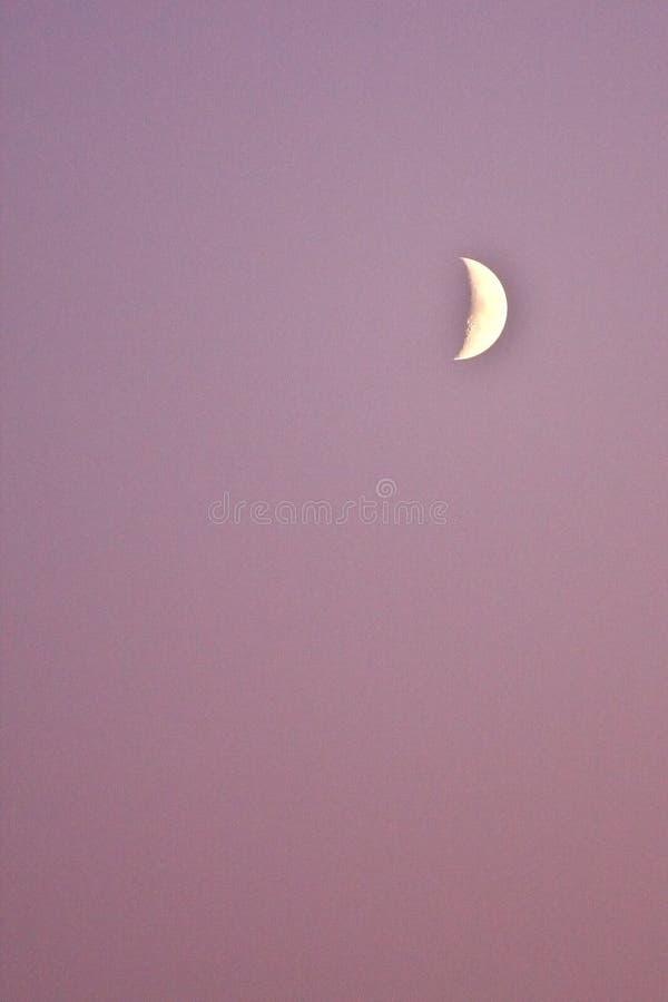 Demi-lune au crépuscule photo stock
