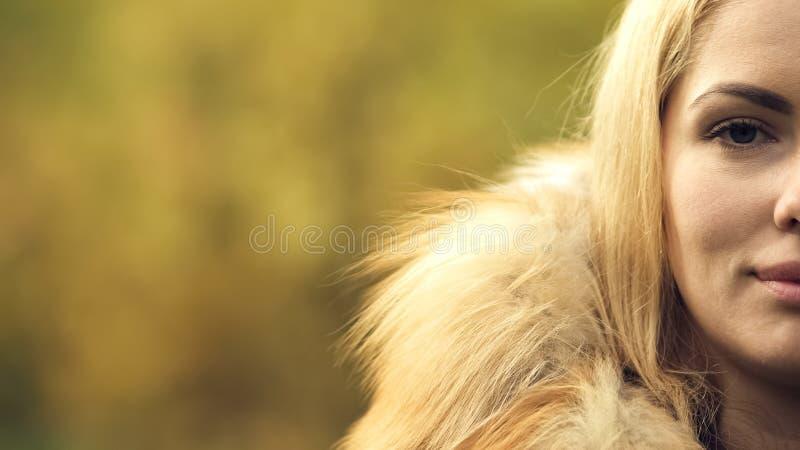 Demi portrait de visage de dame de sourire assez réussie, statistique d'enquête, plan rapproché photo libre de droits