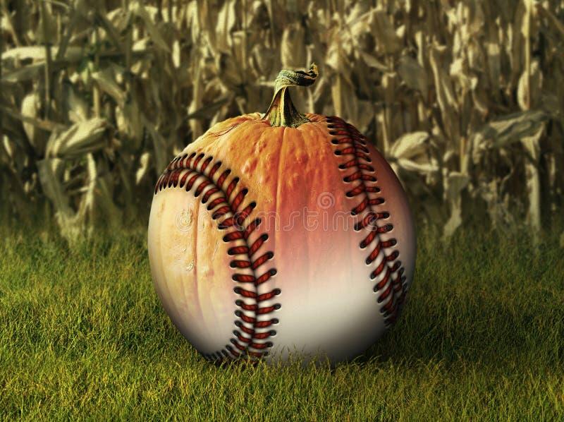 Demi potiron de demi base-ball dans l'arrangement d'automne image libre de droits