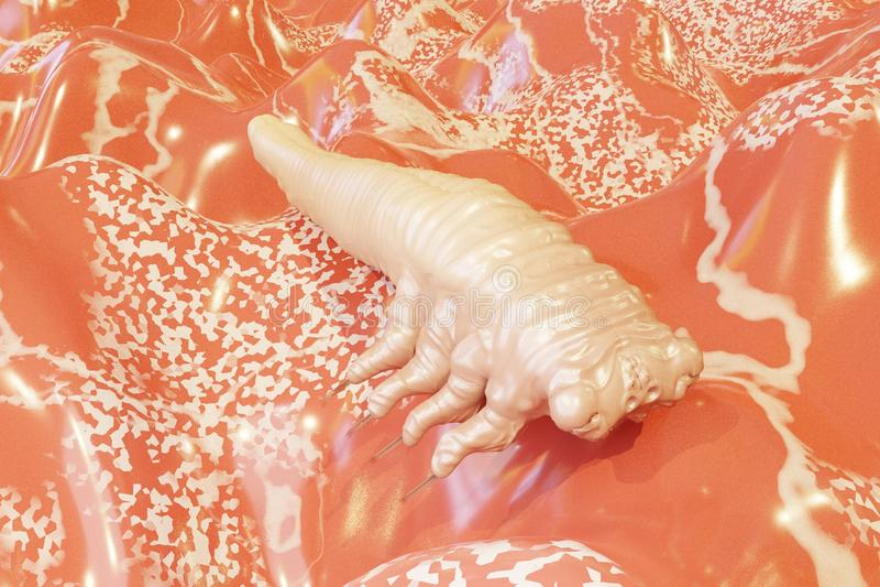 Demodex folliculorum parasite that causes demodicosis illustration 3D rendering royalty free stock images