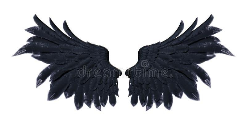 Demon Wings, Black Wing Plumage on White Background stock illustration