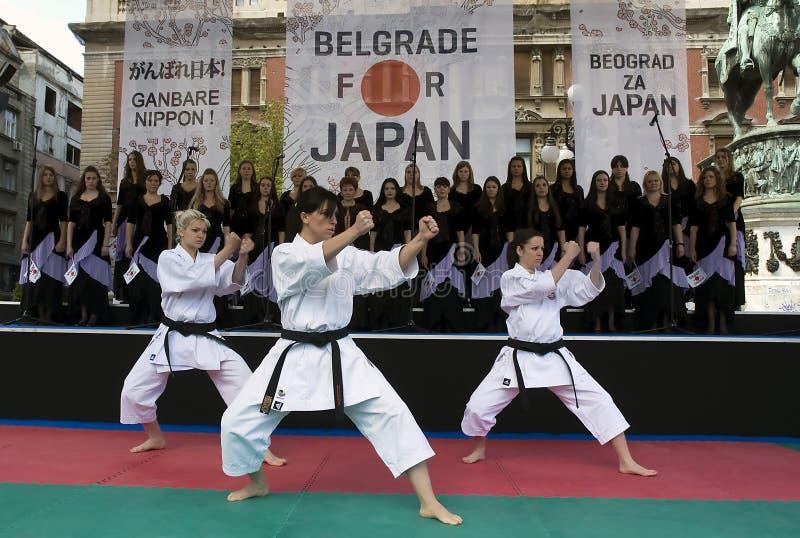 Demonstração do kata do karaté imagem de stock
