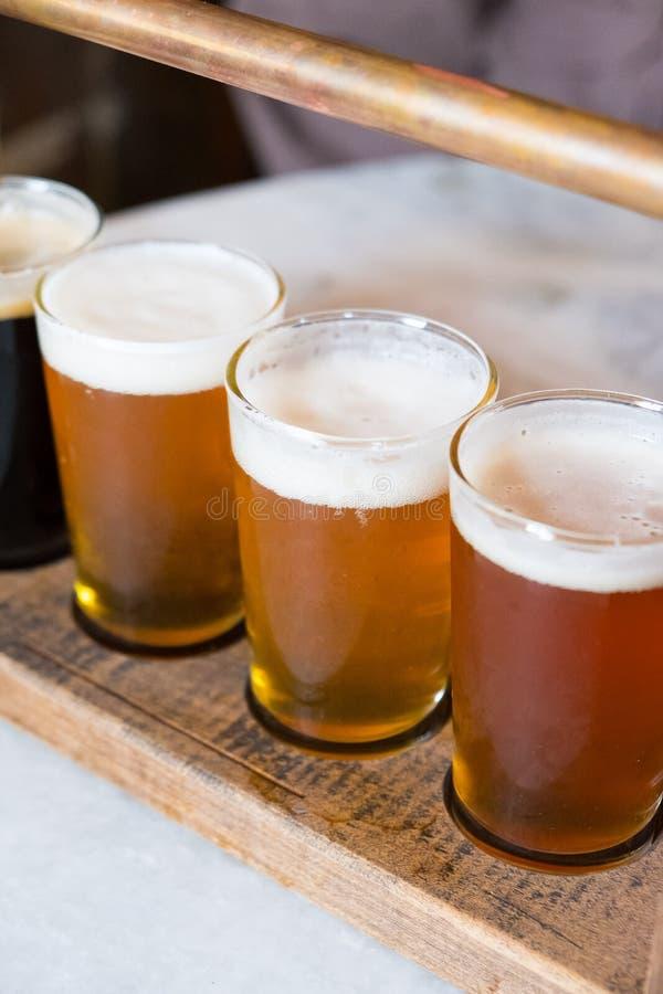 Demonstrador da cerveja do ofício quatro vidros imagem de stock