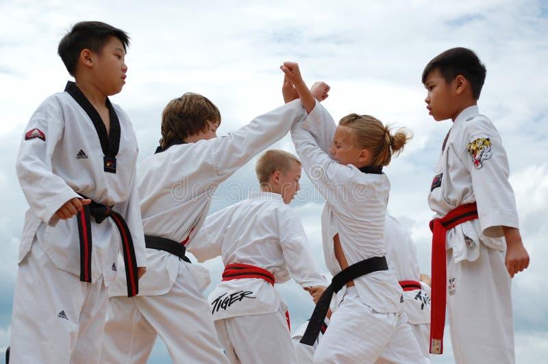 Demonstrating Judo. At Edmonton's Heritage Days royalty free stock image