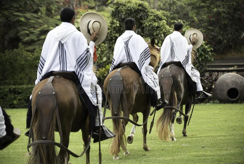 Demonstration of the Peruvian Paso horse mounted by his chalan stock photo