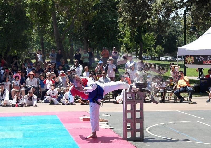 Demonstrationen för kampsporter för grandmasteren Tae Kwon Do/Taekwondo parkerar den offentliga på Rengstorff i Mountain View Kal arkivfoto