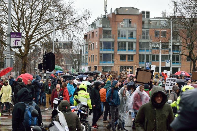 Demonstrationer marscherar för starkare klimatförändringpolitik i Nederländerna fotografering för bildbyråer