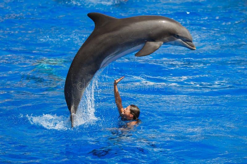 Demostración de los delfínes en Palma de Mallorca imagen de archivo