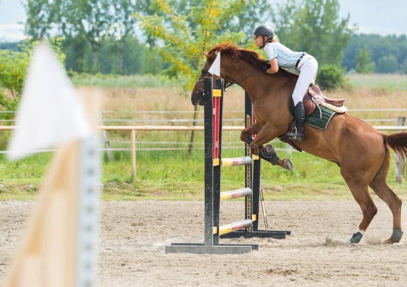 Demostración de salto del caballo foto de archivo libre de regalías