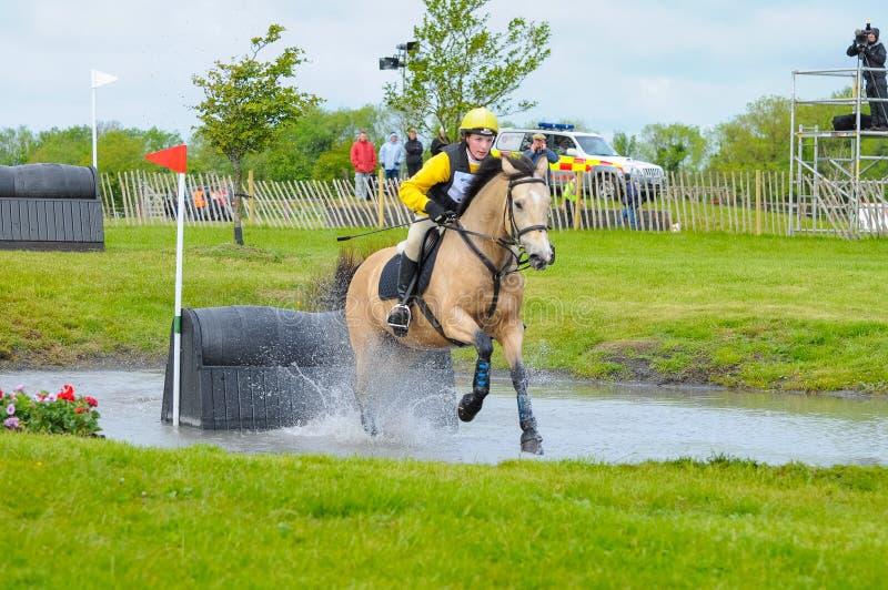 Demostración del caballo de Tattersalls en Irlanda, caballo después del obstáculo en agua con el jinete femenino, jinete que acom fotografía de archivo libre de regalías