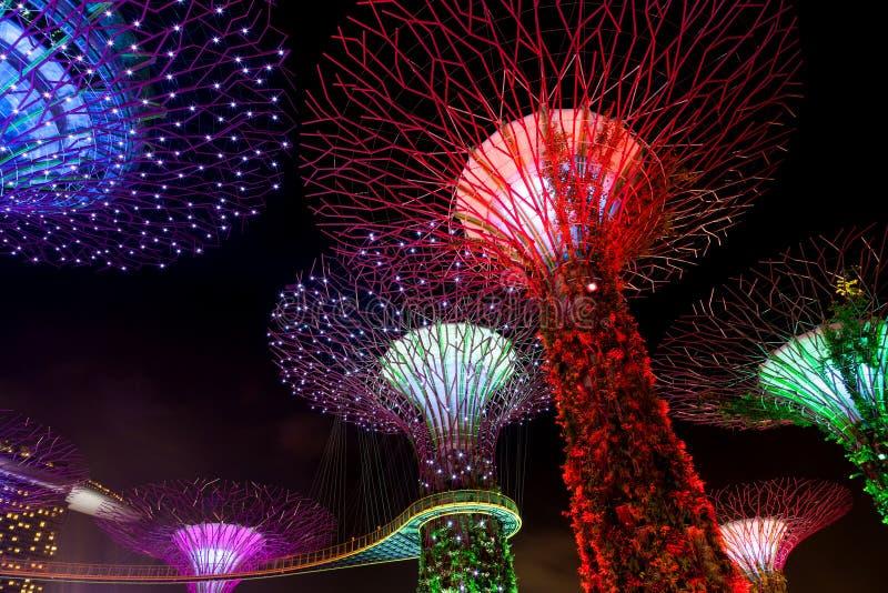 Demostración ligera del deslumbramiento en la arboleda y Marina Bay de Supertree en pecado fotos de archivo