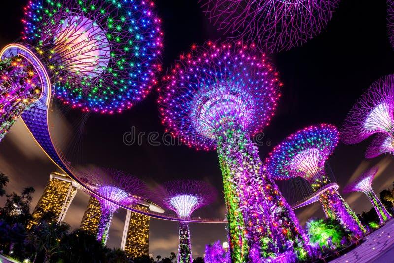 Demostración ligera del deslumbramiento en la arboleda y Marina Bay de Supertree en pecado imagen de archivo libre de regalías