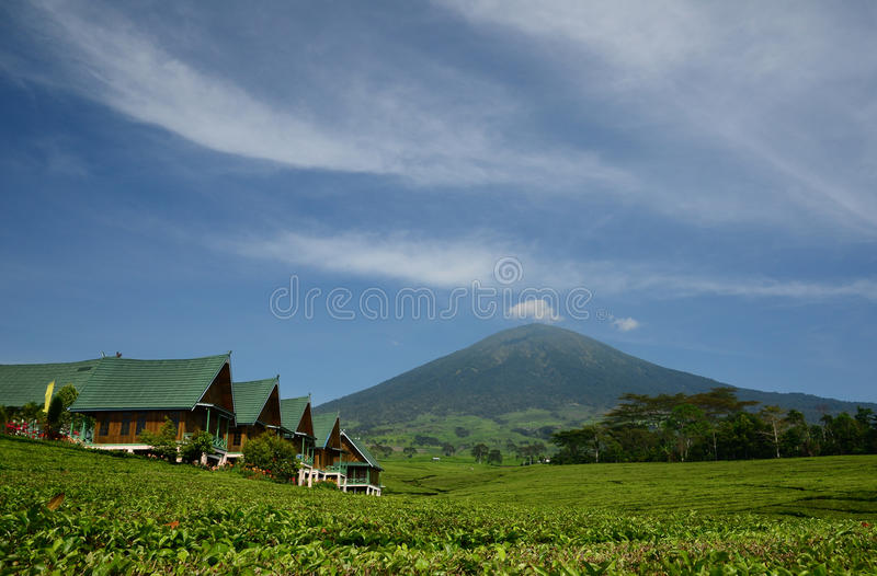 Dempo mount. At pagar alam, south sumatera, indonesia royalty free stock photo