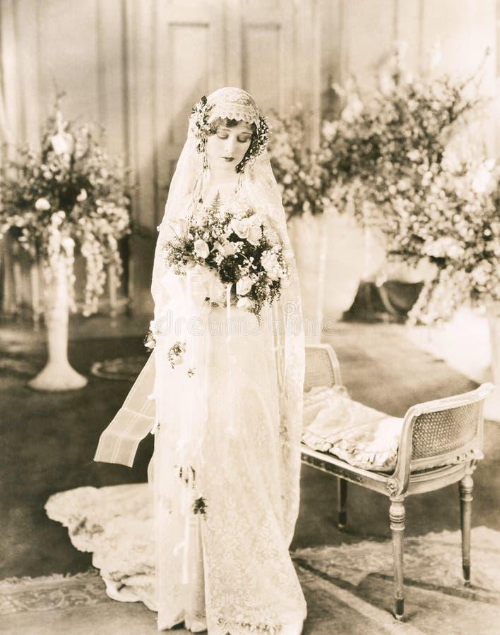 Demure bride stock image