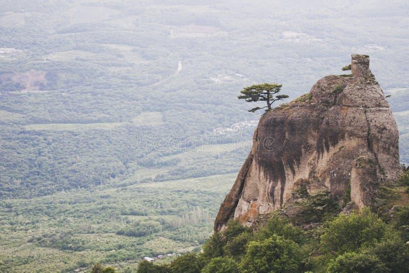 Demurge mountain. Crimea landscape, pine tree on a rock. Demurge mountain view. Crimea landscape, lonely pine tree on a rock royalty free stock photo