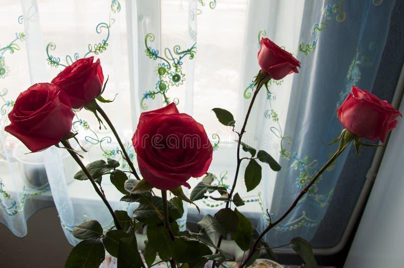 Den älskvärda buketten med stora blommor av rosor av mjuk korallfärg blir på tabellen på fönstret gr?splansidor och taggar ST fotografering för bildbyråer