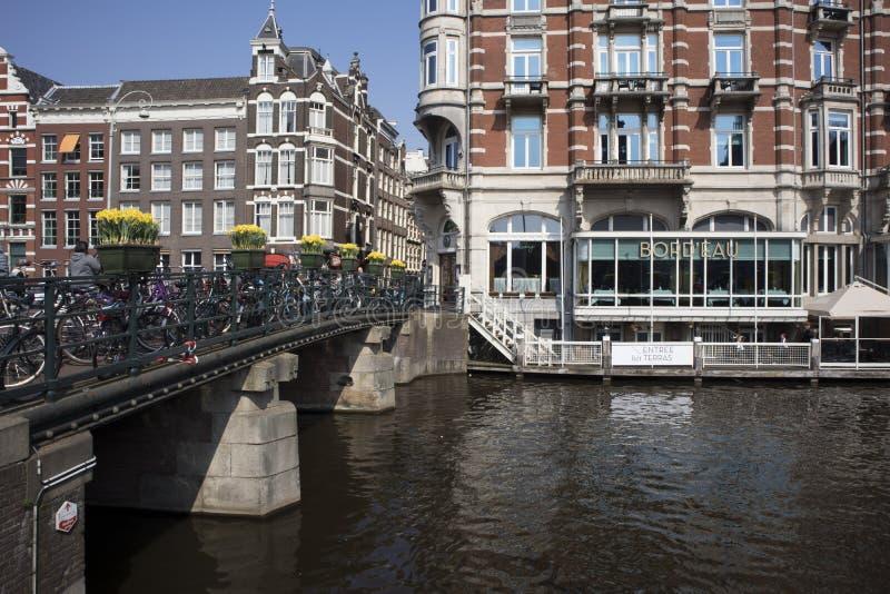 Den årliga festivalen av våren blommar att flöda i gatorna av Amsterdam royaltyfri bild