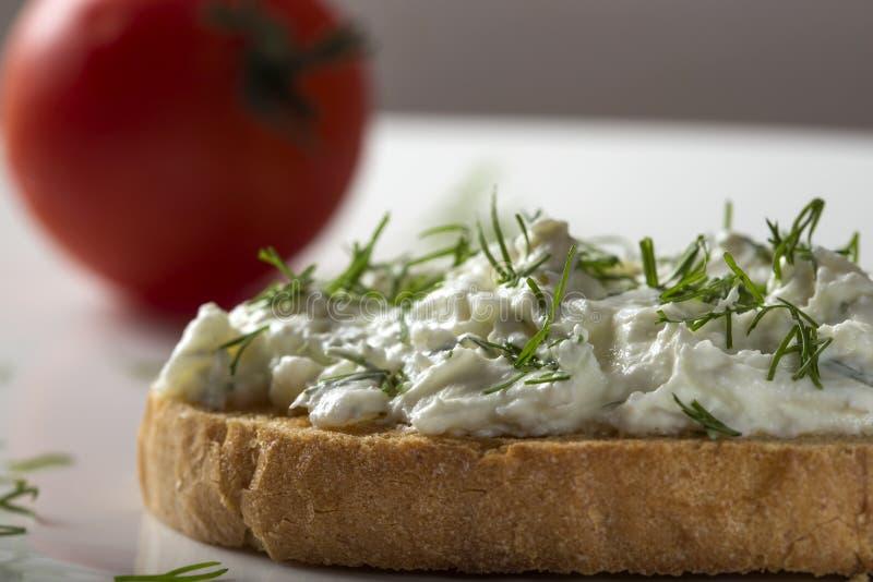 Den öppna smörgåsen med rostat bröd och homandeost lagar mat med grädde med nytt dil royaltyfri bild