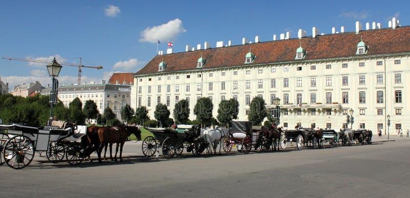 den Österrike hofburgslotten wien royaltyfri foto