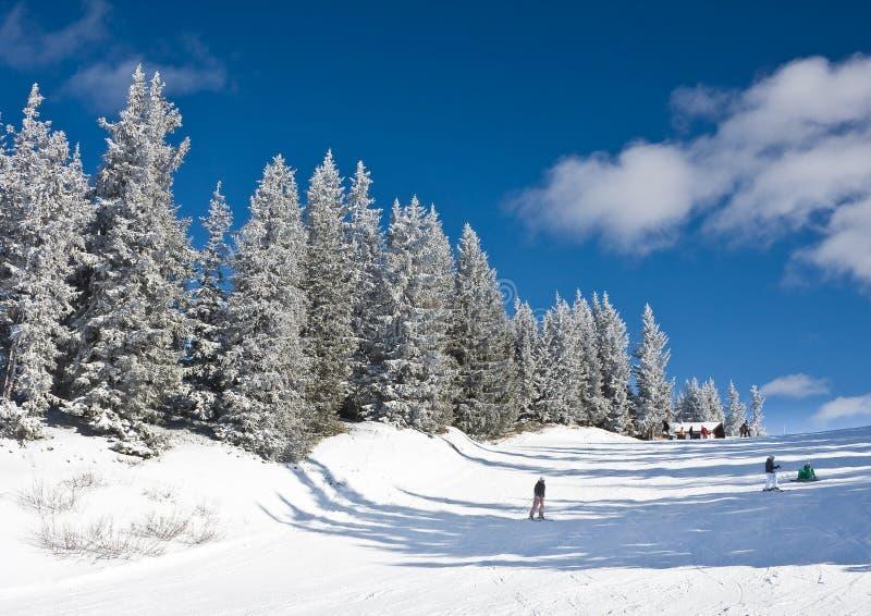 den Österrike semesterorten schladming skidar royaltyfri foto