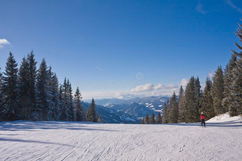 den Österrike semesterorten schladming skidar royaltyfri bild