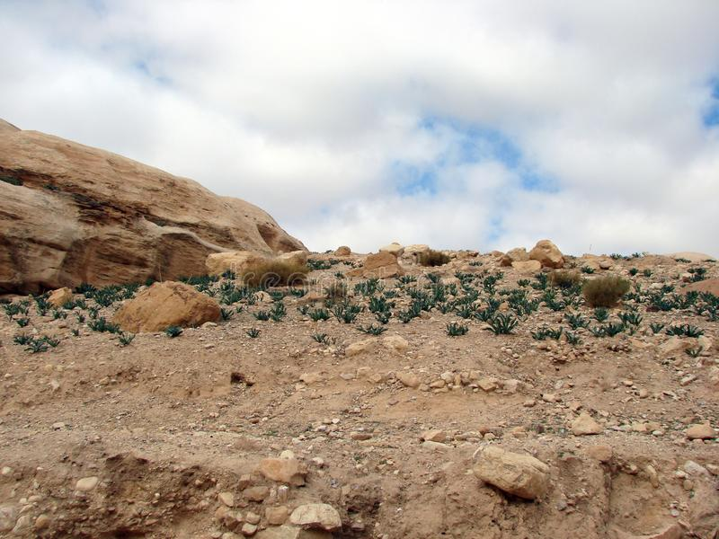 Den östliga ökendelen av Jordanien Landskap av stenen deserterar och vaggar längs vägen till Petra royaltyfri fotografi