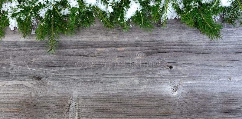 Den över huvudet sikten av snö täckte granjulgranfilialer på wea royaltyfria foton