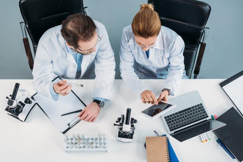 den över huvudet sikten av vetenskapliga forskare i vit täcker genom att använda minnestavlan tillsammans på arbetsplatsen royaltyfri fotografi