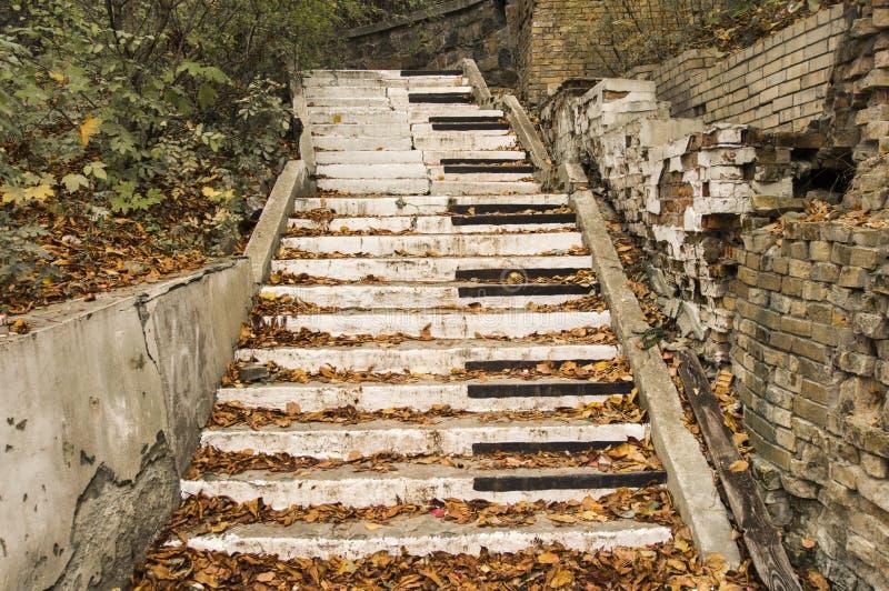 Den övergav trappan, målas i stilen av pianotangenter som omges av stupade gula sidor för hösten och kollapsade väggar Begrepp s arkivfoton