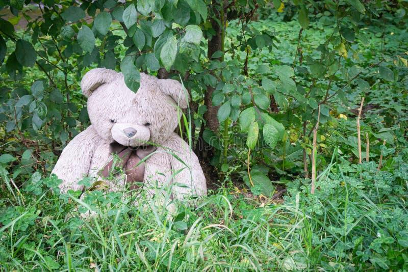 Den övergivna mjuka leksaksbjörnen på gården under trädet Symbol för sorgligt och överge ensamt koncept internationella försvunna arkivbilder