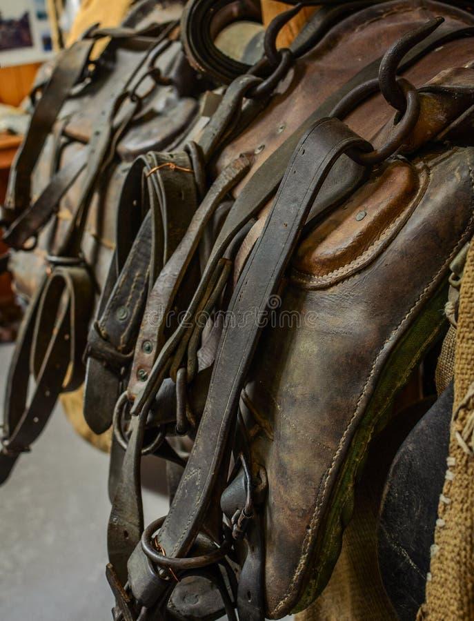 Den övre detaljen för gammalt slut för lädersadelhäst royaltyfria foton