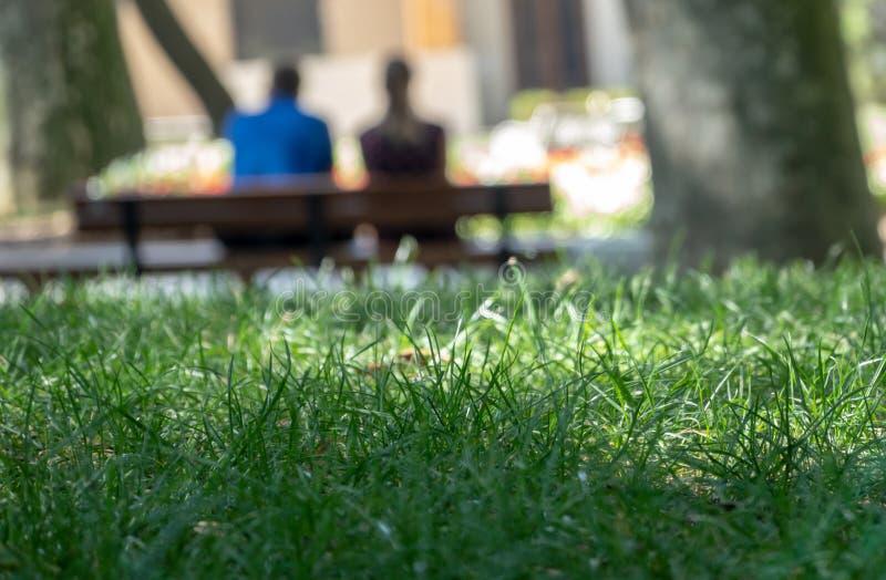 Den abstrakta avsiktligt suddiga bilden av ett par på en bänk bakifrån med gräsplanen fokuserade skarpt gräs i förgrunden arkivfoton