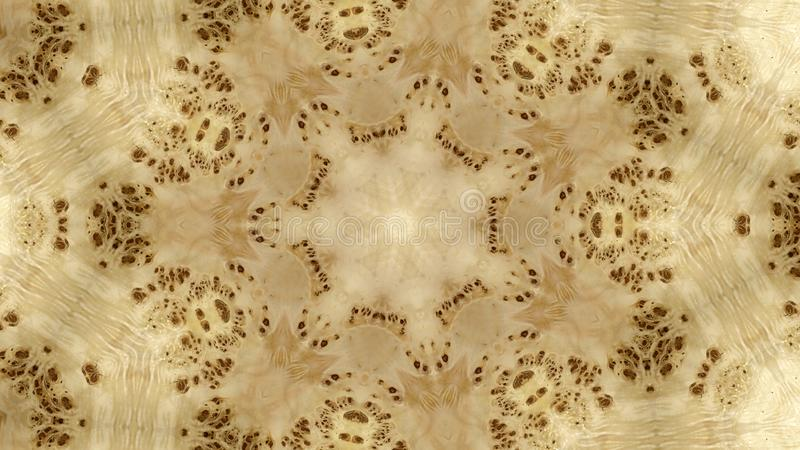 Den abstrakta bilden av en trätextur av en poppel rotar trädet royaltyfri illustrationer