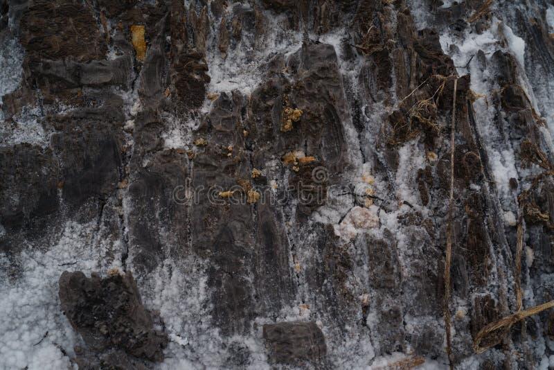Den abstrakta closeupen av saltar slättar vaggar textur i Kissama, Bengo arkivbild