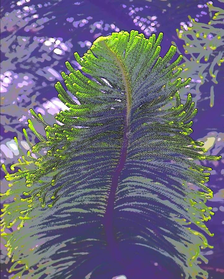 Den abstrakta gröna stora bladillustrationen - gran eller sörjer trädet royaltyfri illustrationer