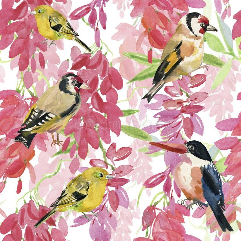Den abstrakta vattenfärghanden målade bakgrunder med fåglar och blommor, royaltyfri illustrationer