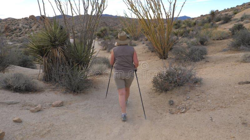 Den aktiva kvinnan med Trekking pinnar som fotvandrar i Mojaveöknen, parkerar Joshua Tree fotografering för bildbyråer
