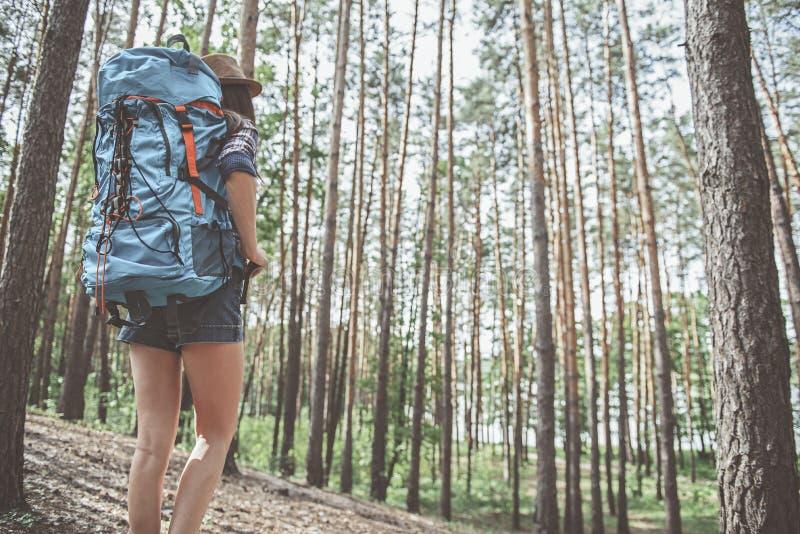 Den aktiva turist- flickan går i skog royaltyfri fotografi